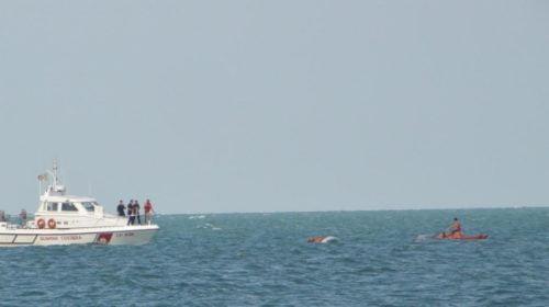 Muore Pescatore a porto recanati