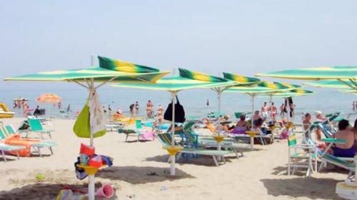 Rissa in Spiaggia