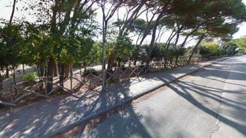 Pineta Portorecanati - Viale della Repubblica