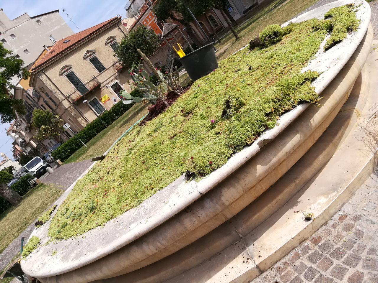 Fontana Piazza Carradori